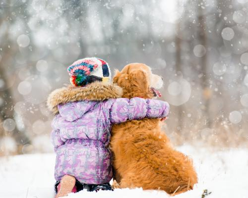 thumbnail of Pets Need Special Care in the Winter