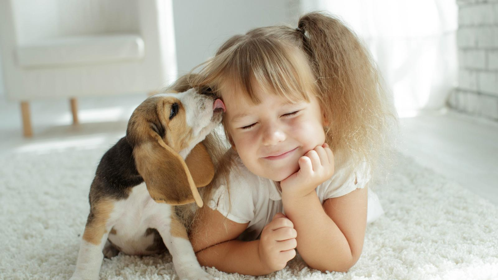 banner of 5 Adjustments to Parenting with Pets